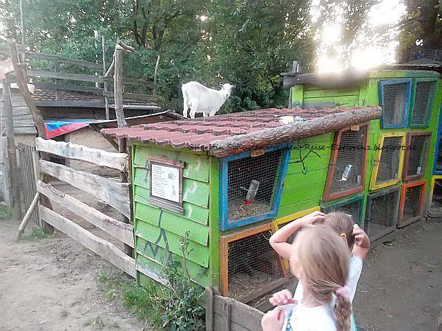 Ausflugsziel für Kinder und Jugendliche in Dresden