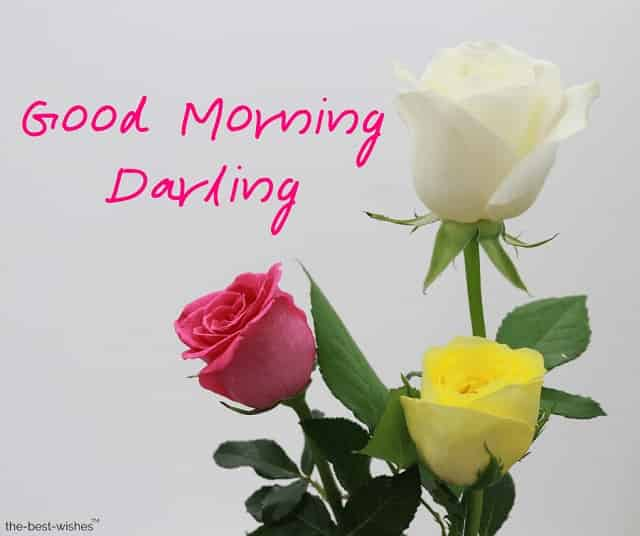 pictures of good morning darling