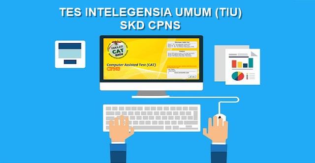 Materi TIU Tes Intelegensia Umum CPNS