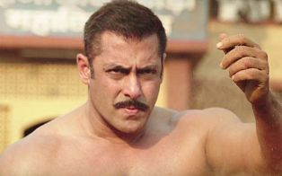 sultan budget amp box office collection 420 crores
