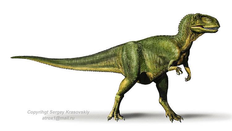 Dinogaleria Abelisaurus on Ur Facts For Kids