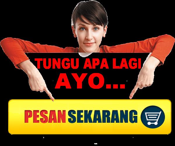 jasa buat web blog murah