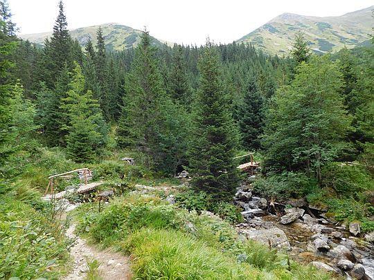 Dolina Jamnickiego Potoku.
