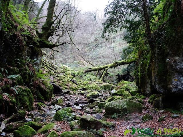 Ruta al Pico Gobia y La Forquita: Atravesando el arroyo la Toya en la Biescona