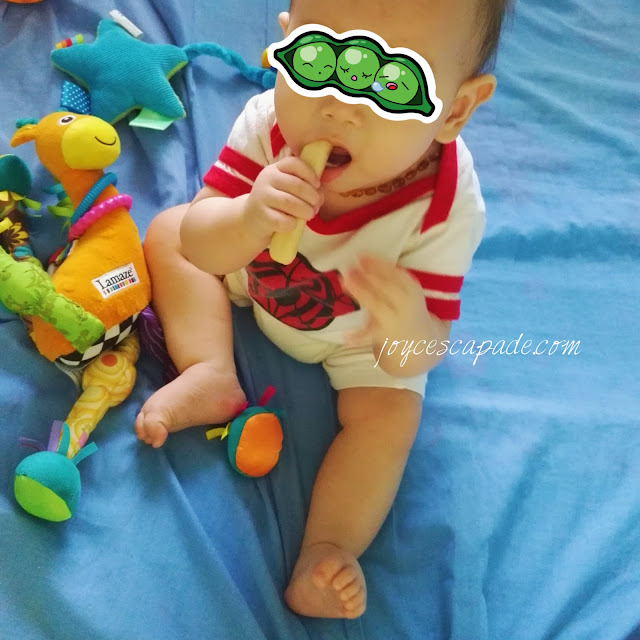 Aleva Naturals Bamboo Baby Diapers Review
