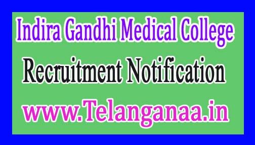 Indira Gandhi Medical College IGMC Recruitment Notification 2017