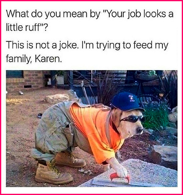 "What do you mean by ""Your job looks a little ruff""? This is not a joke. I'm trying to feed my family, Karen."" Karen... smh, It's always Karen! #funny #retriever #relatable #meme #KarenAgain #lol"