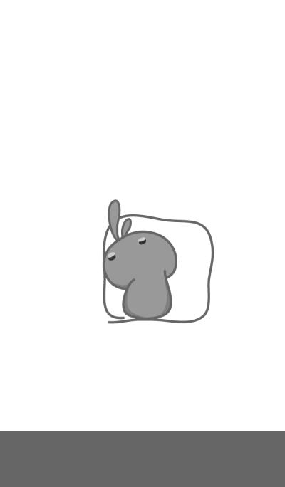 rabbit staring-111