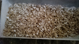 Well crushed grains, endosperm is removed from kernels and well crushed