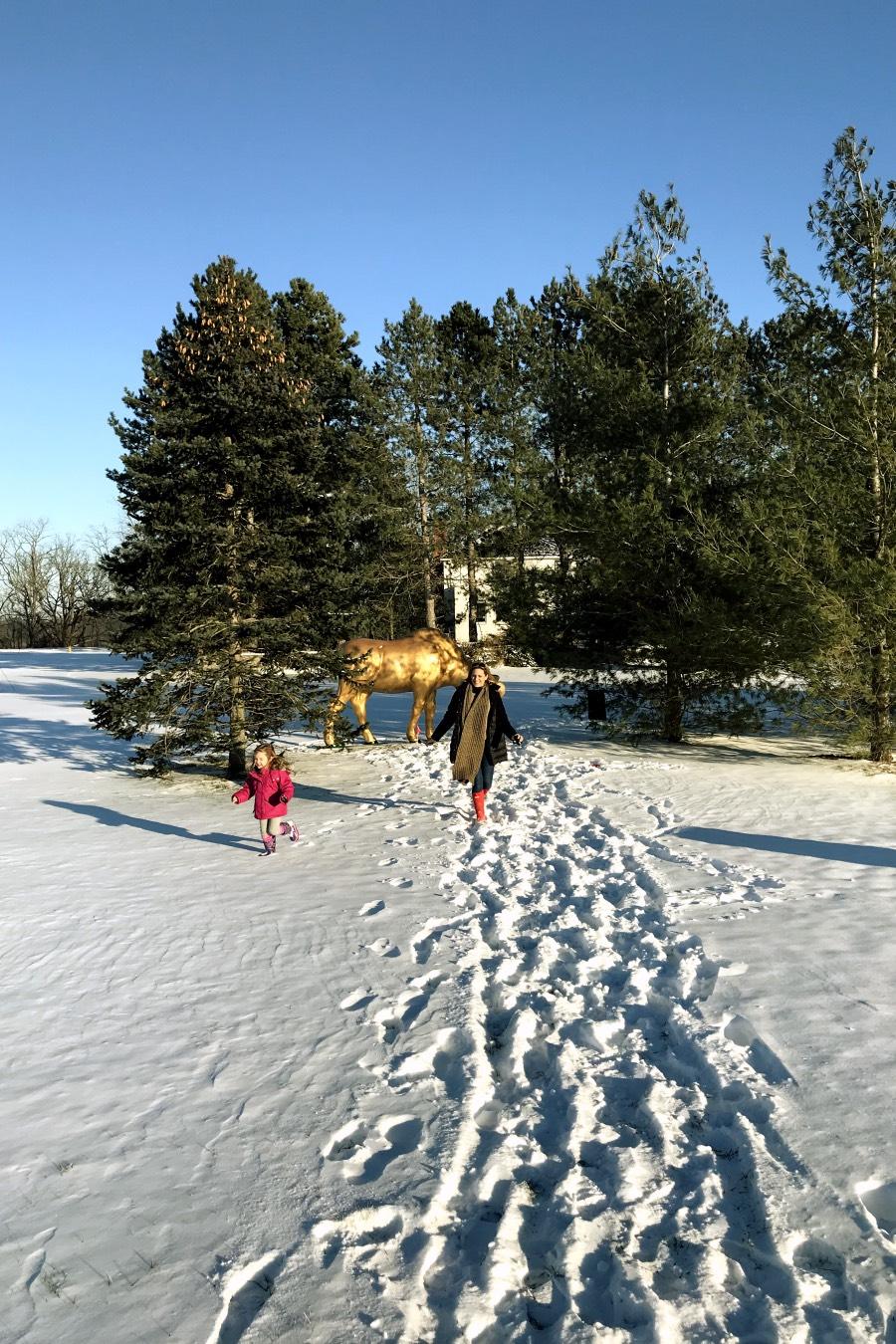 Criança e a mãe brincando de correr na neve, na cidade canadense Niagara-on-the-Lake