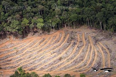 Sumber Daya Alam (SDA), Kerusakan Sumber Daya Alam (SDA), Degradasi Sumber Daya Lahan, Sumber Daya Air.