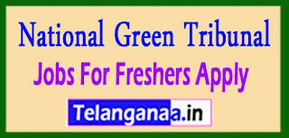 National Green Tribunal The post of Technical Assistant on last date 01-04-2017