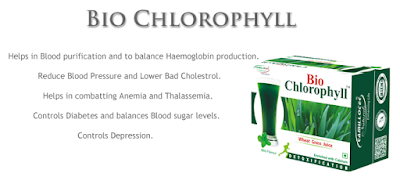 wheatgrass juice powder for blood purification - bio chlorophyll