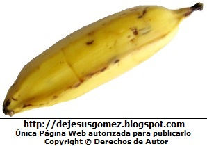 Foto de un plátano de la Isla de Jesus Gómez