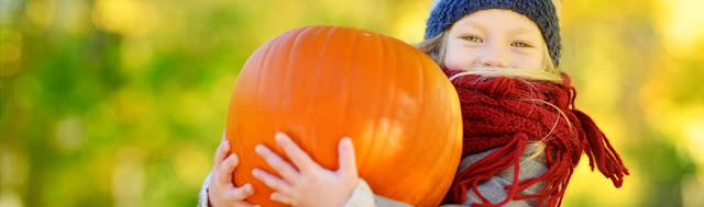 5 Family Friendly Things To Do This Autumn In The Land of Oak and Iron