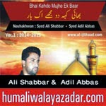 http://audionohay.blogspot.com/2014/10/syed-ali-shabbar-syed-adil-abbas-nohay.html