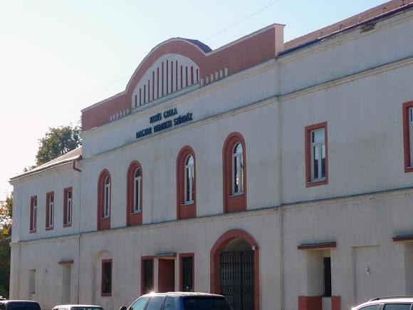 Берегово. Площадь Кошута. Венгерский национальный театр имени Дьюла Ийеш