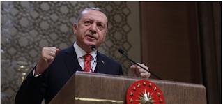 Erdoğan, kuzey Suriye'de kimse yeni bir devlet kuramaz