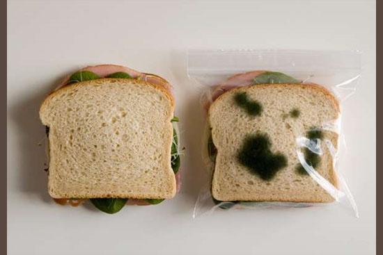 Invenções mais interessantes do mundo - Embalagem de sanduíche a prova de roubo