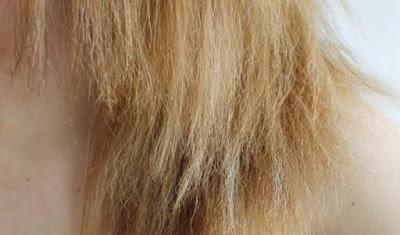 cabelo danificado e  poroso