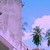 VIDEO | ZEST - SALIO