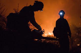 Ενημέρωση από το Πυροσβεστικό Σώμα για τις κυριότερες πυρκαγιές