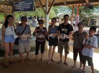 turtle-island-tour