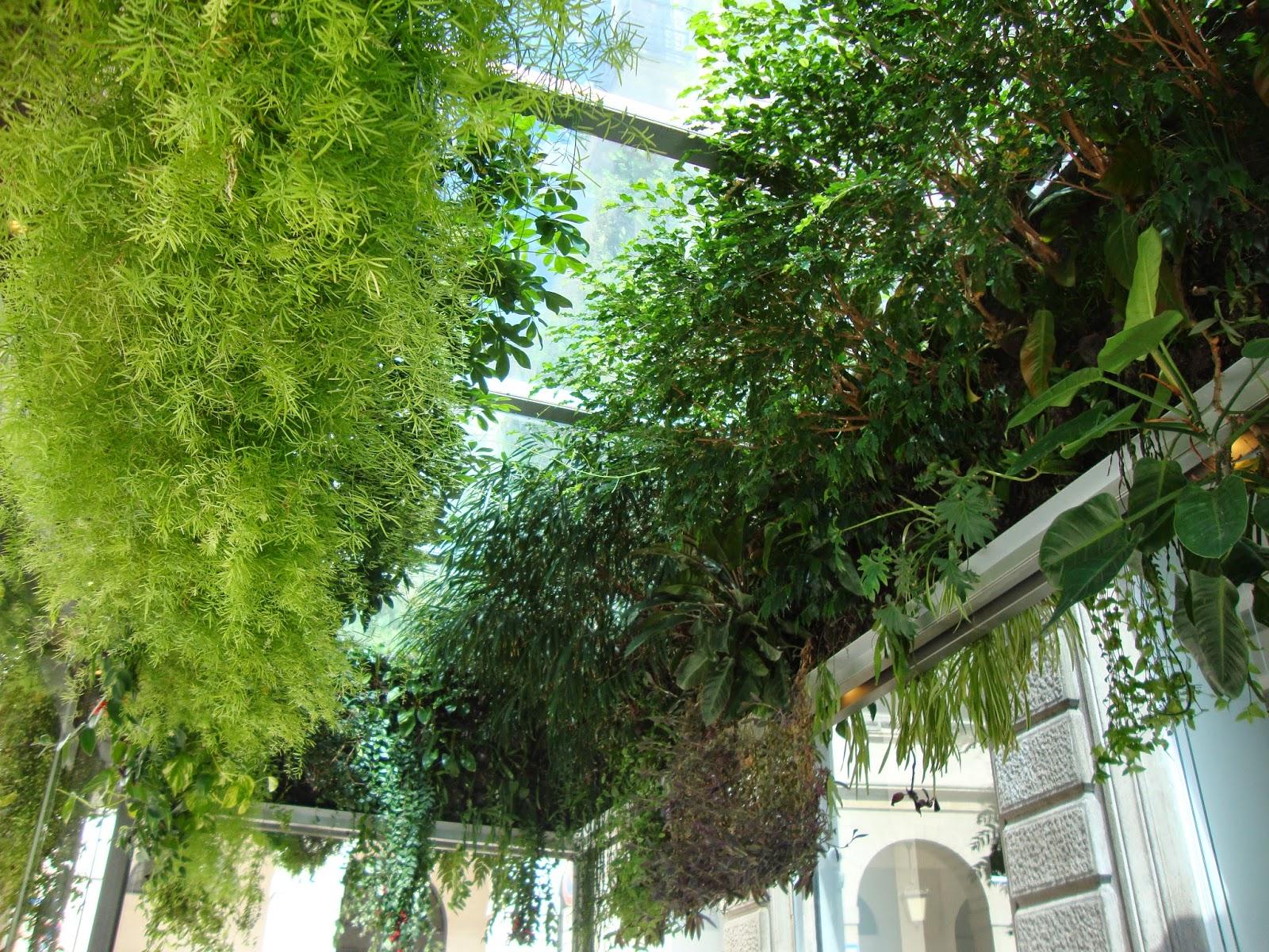 Un piccolo giardino in città: Il giardino verticale di ...