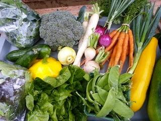 Jen & Derek's Organic Farm vegetables