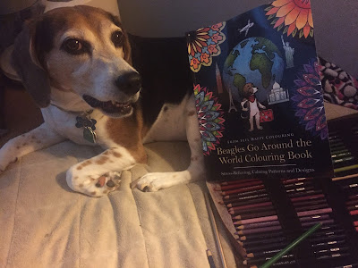 "Lulu models the ""Beagles Go Around the World"" colouring book."