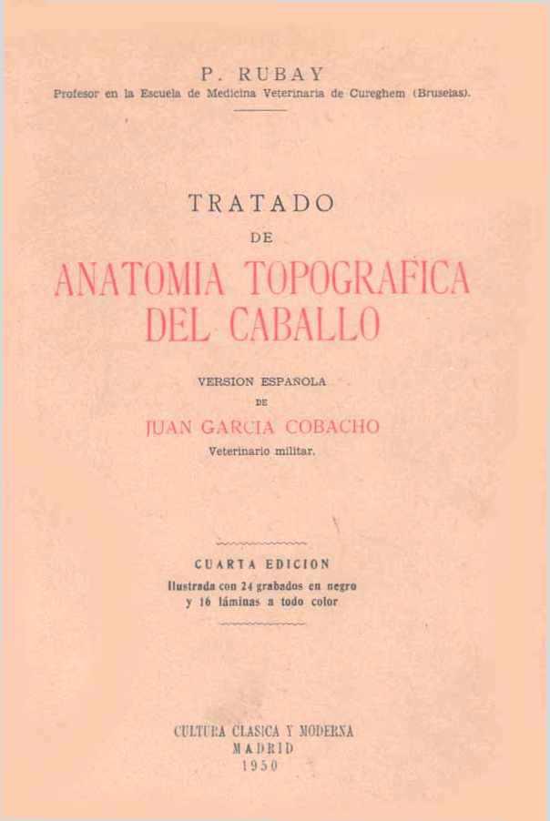 Tratado de anatomía topográfica del caballo – Juan García Cobacho ...