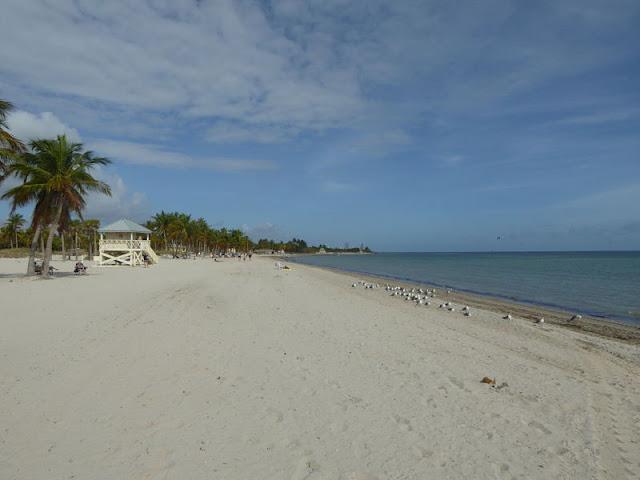 spiaggia di crandon park miami