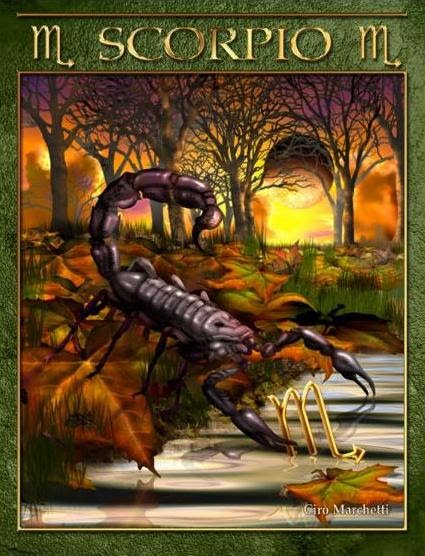 Tarot Musings Using Tarot Reversals: Tarot Musings: Scorpio The Scorpion / Eagle / Grey Lizard