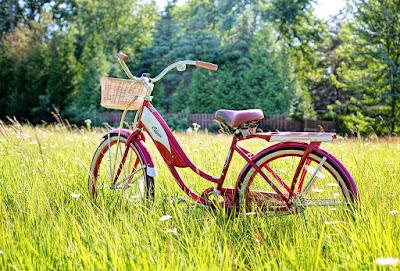 Diferente intre bicicleta electrica si cea normala