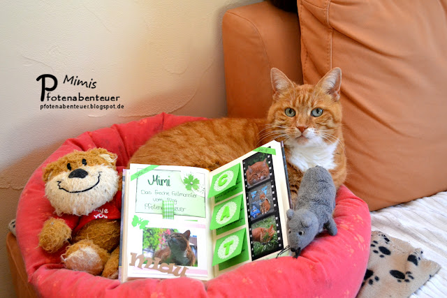 Katze Mimi und ihr Pfotenabenteuer-Eintrag im Katzenbloggerbuch