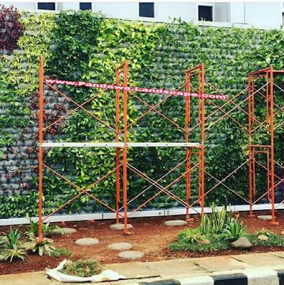 Vertical garden semarang