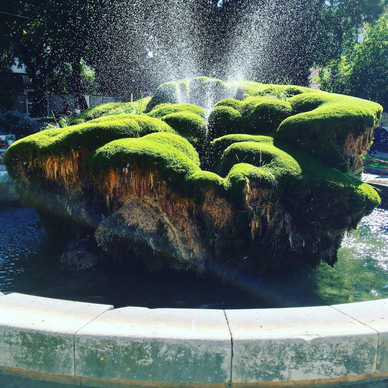 Šibenik - starobylé město, mechová fontána s želvami, malá oáza uprostřed rozpáleného města