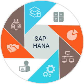 SAP HANA Learnings - 01 - Introduction about Course Goals