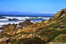 Scenic 17-mile Drive Of Monterey Peninsula