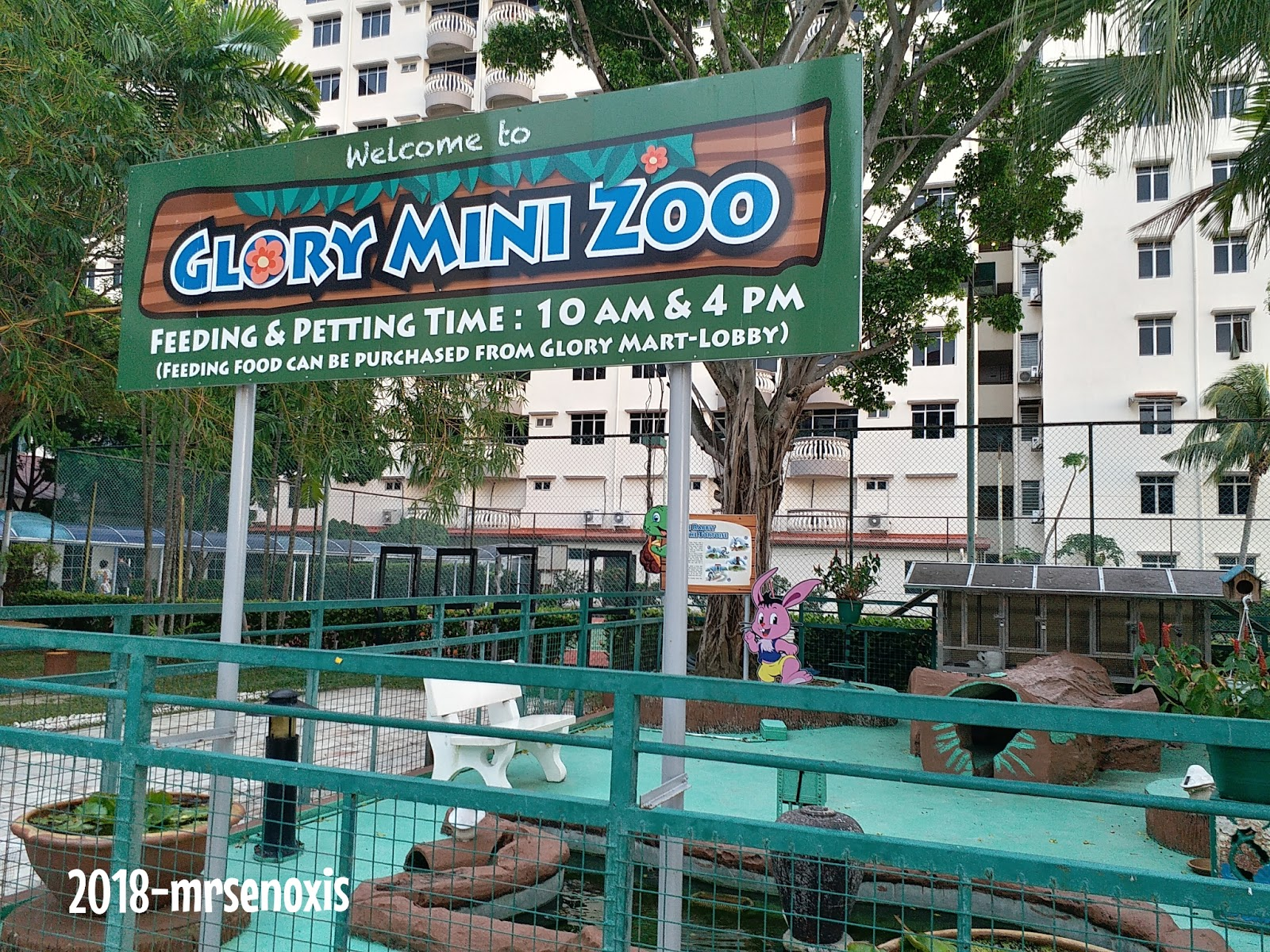 Dekat Glory Ni Ada Juga Mini Petting Zoo Tp Masa Dia La Kami X Masuk Pun Just Jenguk Saja Arnab Turtle Dan Burung Rasanya