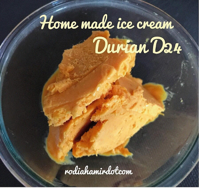 Ice Cream Durian D24