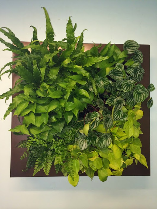 Vertical Gardens as Interior Scape