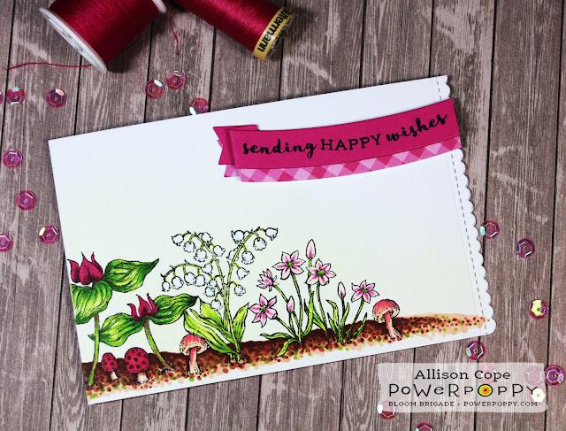 Power Poppy Natural Beauties에 대한 이미지 검색결과