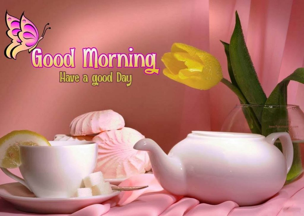 Images For Good Morning 60 Free Download New 60 Latest Whatsapp Mesmerizing Best Flower With Love Quotes To Download