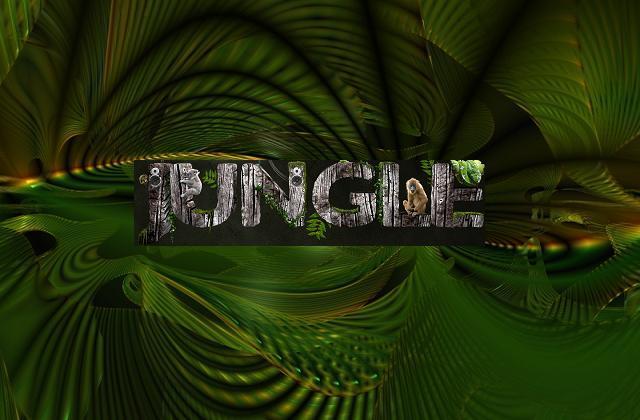 Jungle zene  ütemek a dzsungelből