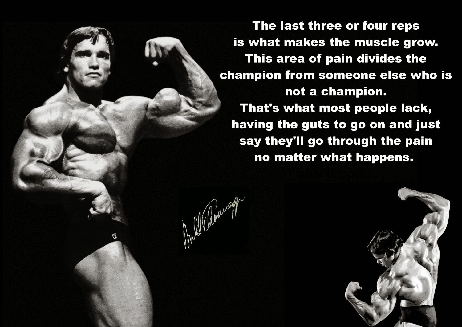 Arnold Schwarzenegger Quotes About Life. QuotesGram