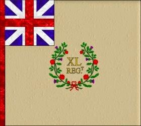 40th Regiment of Foot (Peregrine Hopson) Regimental Colour