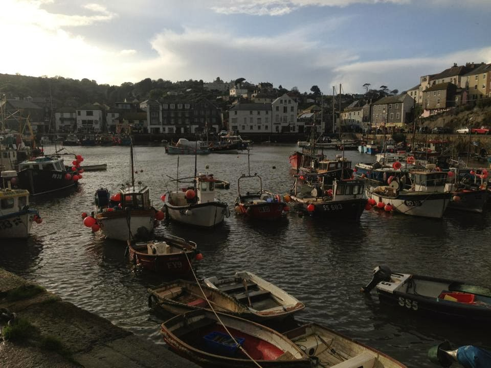 Looking across the harbour to Mevagissey town. The harbour is filled with fishing boats and the town can be seen in the background.