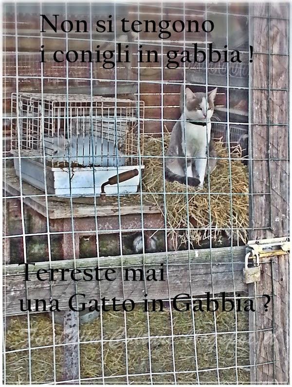 Recensione Cascina Bosco Gerolo Localita' Gerolo Roveleto Landi – RIVERGARO (PC)