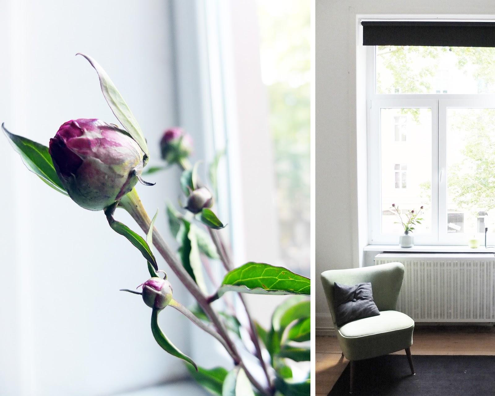 Maulwurfsh gelig friday flowerday im fenster - Fensterbauer frankfurt ...